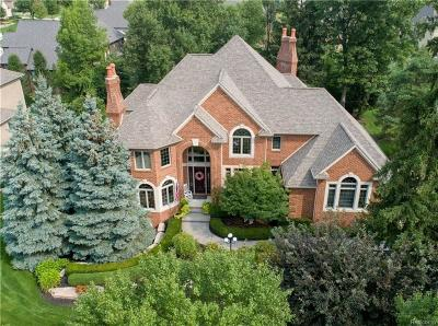 Washington MI Single Family Home For Sale: $699,900