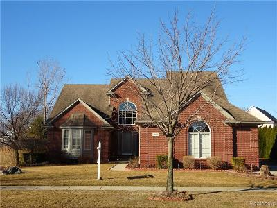 Shelby Twp Single Family Home For Sale: 49275 Golden Lake Dr
