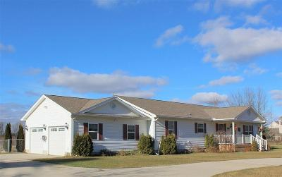 Lapeer Single Family Home For Sale: 7136 Cade