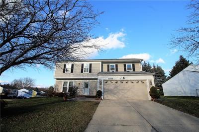 Farmington Hills Single Family Home For Sale: 34680 Princeton St