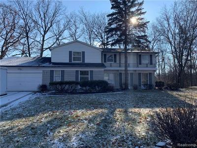 West Bloomfield Single Family Home For Sale: 4275 Whitebirch Dr