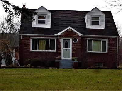 Port Huron Single Family Home For Sale: 3917 Lapeer Rd