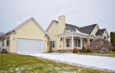 Lapeer Single Family Home For Sale: 957 N Summers Rd