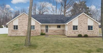 Rochester Hills Single Family Home For Sale: 3801 John R Rd