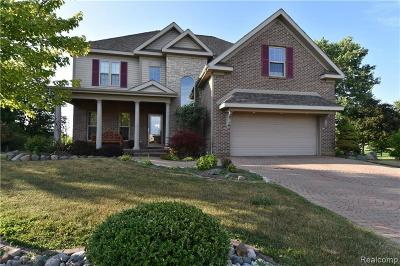 Flushing Single Family Home For Sale: 7100 Woods West Dr