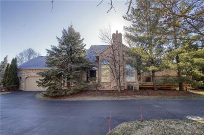Shelby Twp MI Condo/Townhouse For Sale: $400,000