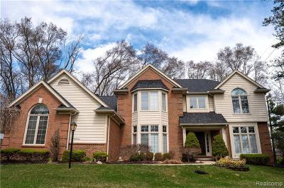 Northville Single Family Home For Sale: 39762 Woodside Dr S