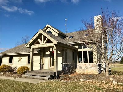 Lapeer Single Family Home For Sale: 2457 Dodds Rd