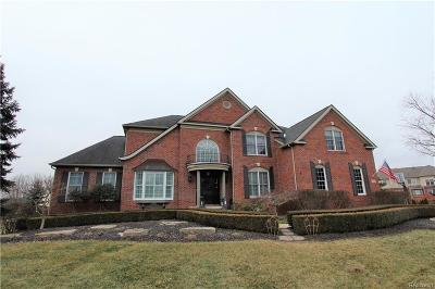 Northville Single Family Home Keep Showing-Contgcy Appl: 50529 Eagles Nest