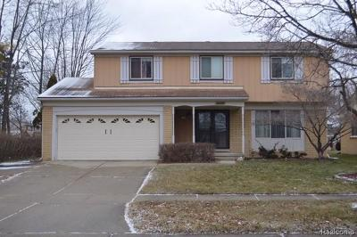 Canton Single Family Home For Sale: 45284 Patrick Dr