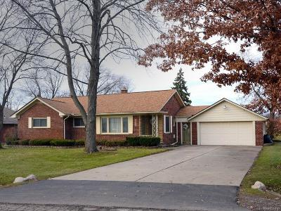 Clinton Township Single Family Home For Sale: 16925 Penrod Dr