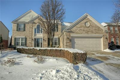 Macomb Twp Single Family Home For Sale: 48683 Michaywe Dr