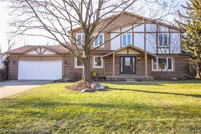 Bloomfield Hills Single Family Home For Sale: 5330 Hollow Dr