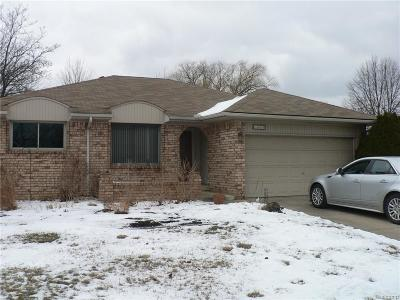 Troy Single Family Home For Sale: 1035 Milverton Dr