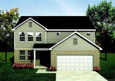 Macomb Single Family Home For Sale: 22359 Autumn Blaze Dr