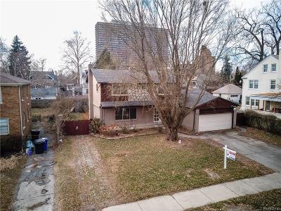 Detroit Single Family Home For Sale: 501 Parkview Dr