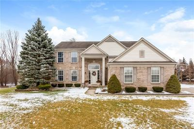 Canton Single Family Home For Sale: 48991 Brooklyn Crt