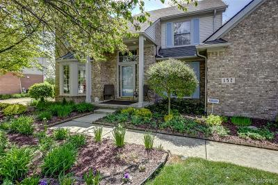 Canton Single Family Home For Sale: 157 Mornington Crt