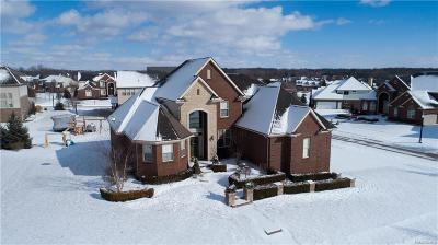 Shelby Twp Single Family Home For Sale: 56529 Ken Charles Dr