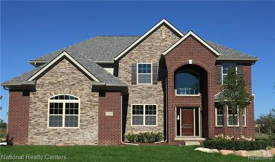 Lake Orion Single Family Home For Sale: 4 Waldon Meadows Crt