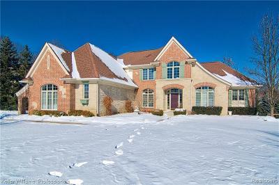 Clarkston Single Family Home For Sale: 6968 Oakhurst Ridge Rd