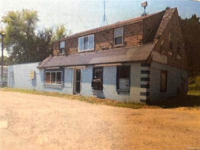 Lapeer Residential Lots & Land For Sale: 5967 N Lapeer Rd