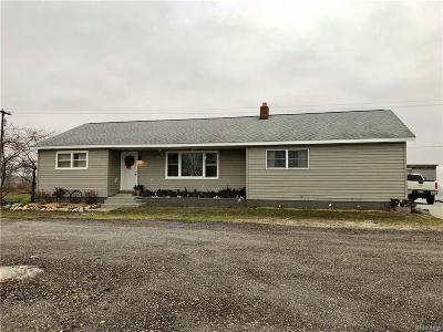 Lapeer Single Family Home For Sale: 622 N Van Dyke Rd