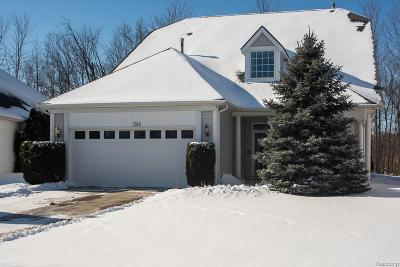 Auburn Hills Condo/Townhouse For Sale: 3518 Riverside Dr