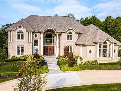 Northville Single Family Home For Sale: 21341 Bridle Run