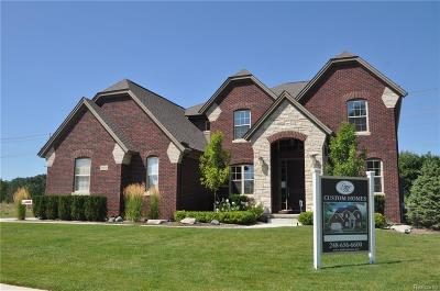 Rochester Single Family Home For Sale: 1078 Queensboro Dr