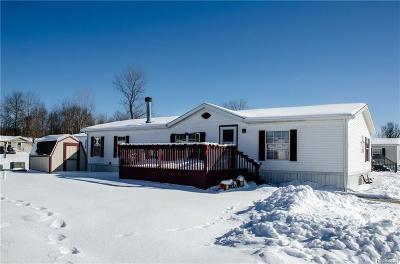 Fort Gratiot Single Family Home For Sale: 40 Deer Creek Dr