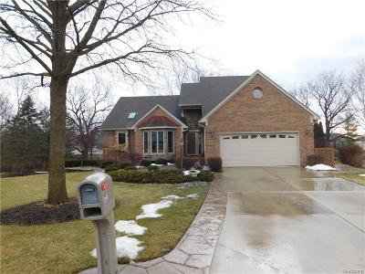 Rochester Hills Single Family Home For Sale: 721 Essex Dr