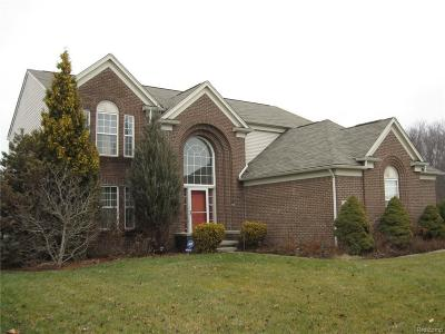 Sterling Heights Single Family Home For Sale: 15033 Mill Creek Dr