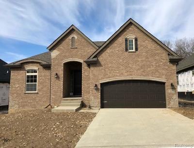 Clarkston Single Family Home For Sale: 5493 Woodfall Rd