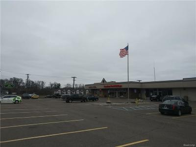 Shelby Twp Commercial Lease For Lease: 52968 N Van Dyke Ave S