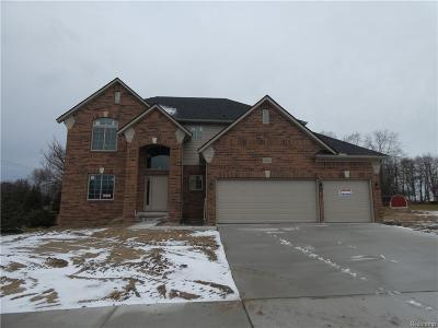 Macomb Single Family Home For Sale: 21821 Rio Grande Dr