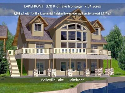 Belleville Single Family Home For Sale: 43801 S I-94 Service Dr