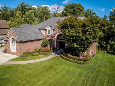 West Bloomfield Single Family Home For Sale: 7015 Hawk Woods Crt