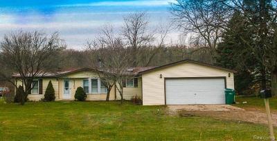Belleville Single Family Home For Sale: 43300 Tyler Rd