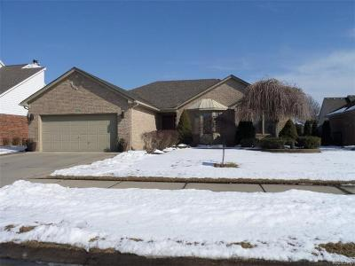 Macomb Single Family Home For Sale: 48668 Jefferson Dr