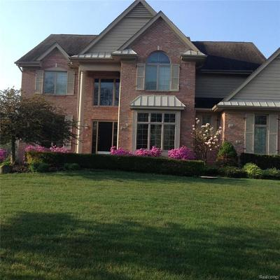 Northville Single Family Home For Sale: 45625 Tournament Dr