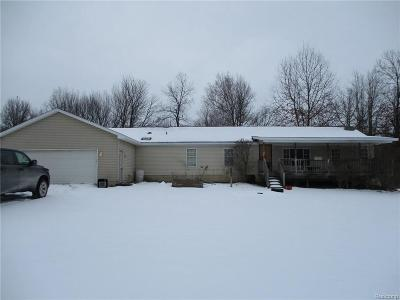 Lapeer Single Family Home For Sale: 4880 Birch Ridge Ln