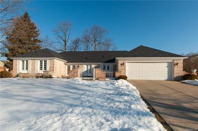 Farmington Hills Single Family Home For Sale: 25853 Livingston Cir