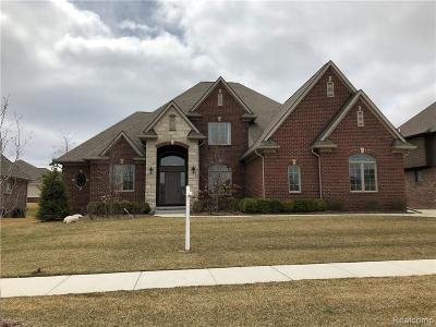 Shelby Twp Single Family Home For Sale: 6350 Creekside Dr