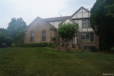 Oakland Single Family Home For Sale: 5743 Timberridge Dr