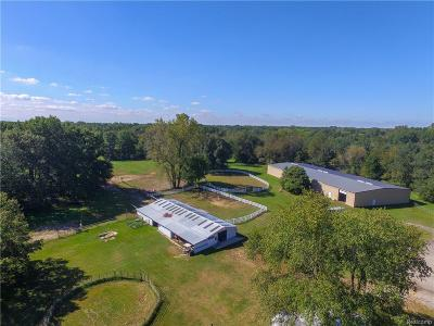 Belleville Single Family Home For Sale: 42891 Bemis Rd