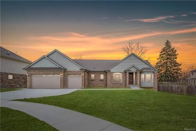 Rochester Hills Single Family Home For Sale: 3781 Milano Crt