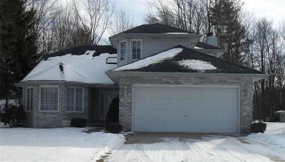 St. Clair Single Family Home For Sale: 4087 Buckley Dr