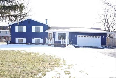 Troy Single Family Home For Sale: 2226 Orpington Dr
