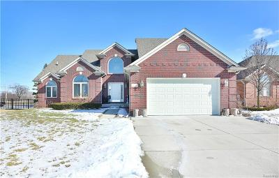 Macomb Single Family Home For Sale: 50942 Bredenbury Dr